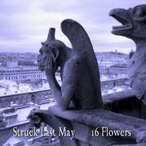 16 Flowers by Struck Last May