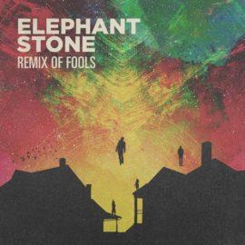 Elephant Stone Releases Remix of Fools EP