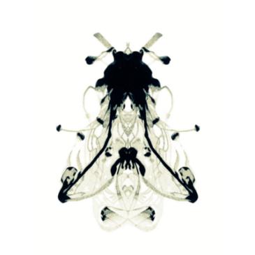 xDEFIANTx – Fourth Plague