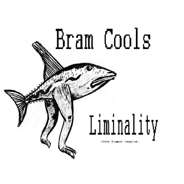 Bram Cools Releases Liminality